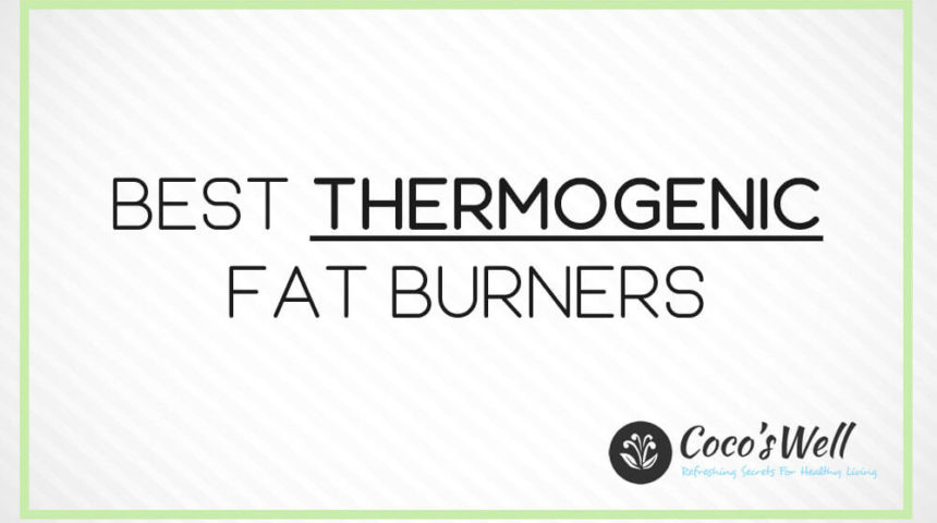 Best Thermogenic Fat Burners You Should Try in 2021